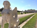 Vienna Pictures Palaces: Belvedere gardens, sphinx