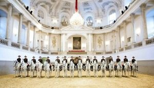 Vienna tourism calendar: Spanish Riding School