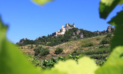 Richard Lionheart: Duernstein Ruin, Austria