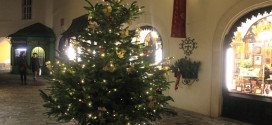 Vienna hotels for Christmas: seasonal tree