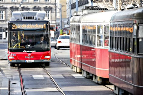 Vienna bus and tramway