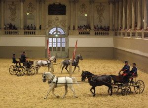 Things to do in Vienna July : Piber Meets Vienna