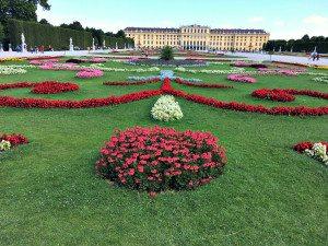 Schonbrunn's baroque gardens
