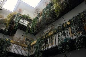 Secret Vienna Tour: courtyard Blutgasse
