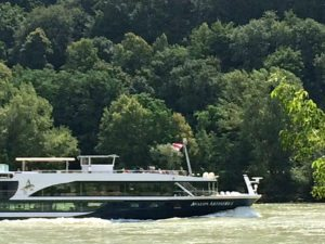 Wachau boat trip: Danube passenger ship
