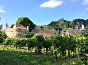Wachau boat trip: Durnstein village