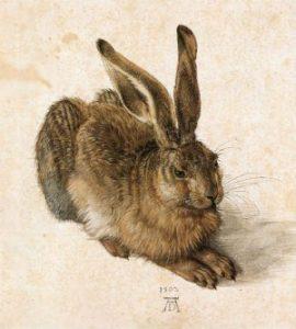 Albertina Vienna: Durer Hare