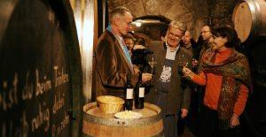 Neusiedlersee: wine tasting in Rust