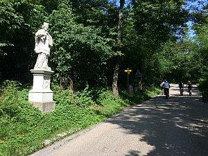 Kahlenberg Bergweg