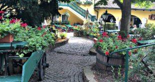 Vienna wineries: Buschenschank Wolf