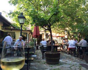 Vienna wineries: Fritz Wieninger, Stammersdorf