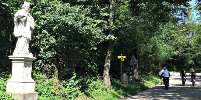 Vienna bicycle tour: Vienna Woods