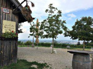 Vienna bicycle tour: tavern Wieninger am Nussberg