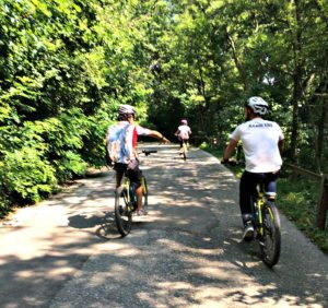 Things to do in Vienna May: bicylce tour