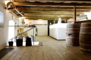 Things to do in Vienna June: Burgenland wine tour