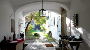 Burganland wine tour: Hopler winery estate