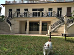 Vienna Sightseeing Top 10: Klimt Villa