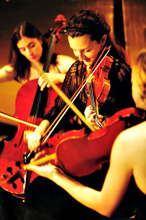Beethoven in Vienna: string trio