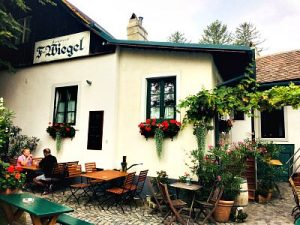 Vienna Tours: Minivan Tour: Wine tavern Weigel