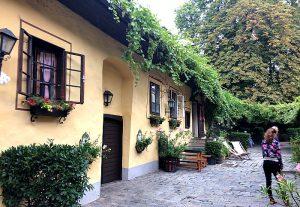 Vienna Sights Minivan Tour: Heuriger
