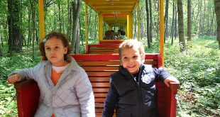Vienna with toddler: Liliput train